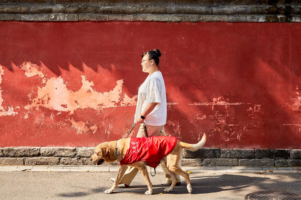 周彤喜欢戴着 Apple Watch 与她的导盲犬小杰一同散步。