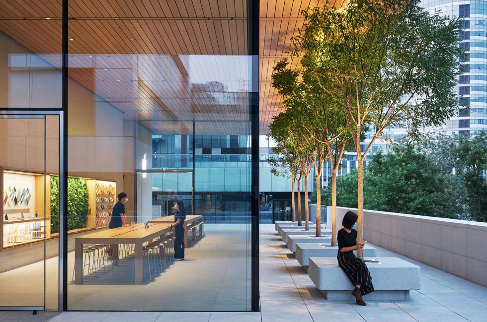 图片展现建筑物的玻璃幕墙和绿树成荫的户外露台。