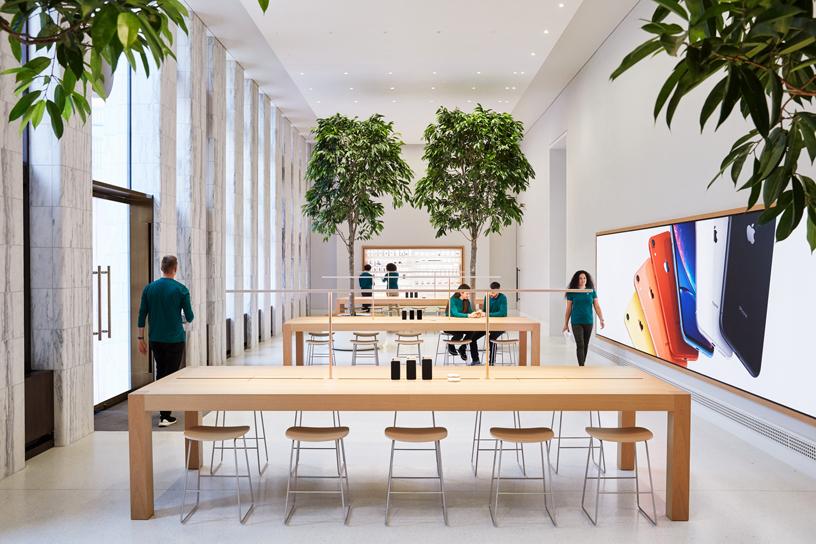 Apple Carnegie Library 零售店的 Genius Grove 天才园。