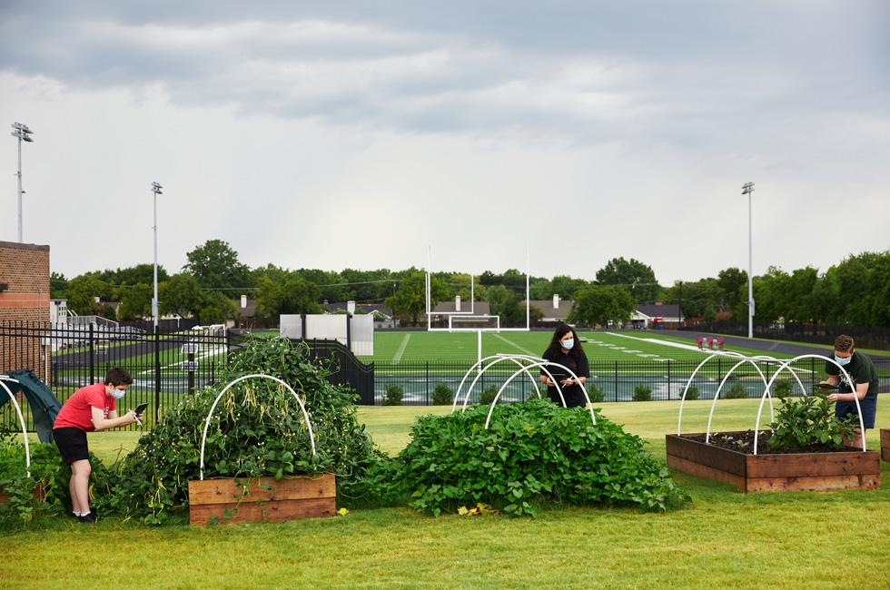 Annabeth Hook、Jodie Deinhammer 和 Stayton Slaughter 正在打理 Coppell Middle School East 的社区花园。