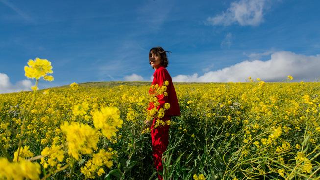 摄影师 Anna-Alexia Basile 拍摄的一张照片。