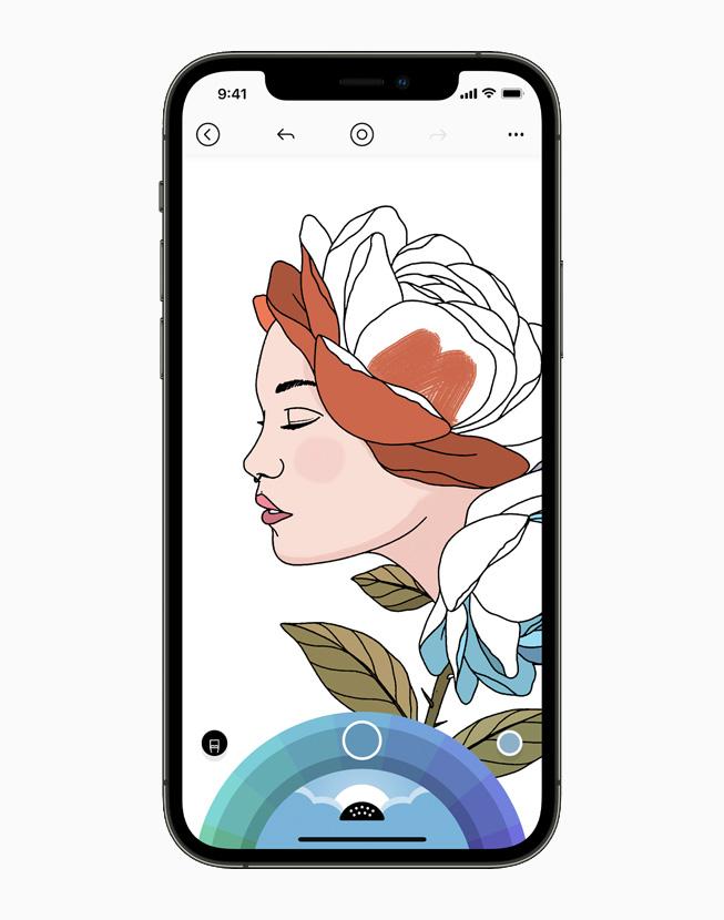 iPhone 12 Pro 上正在显示 Lake