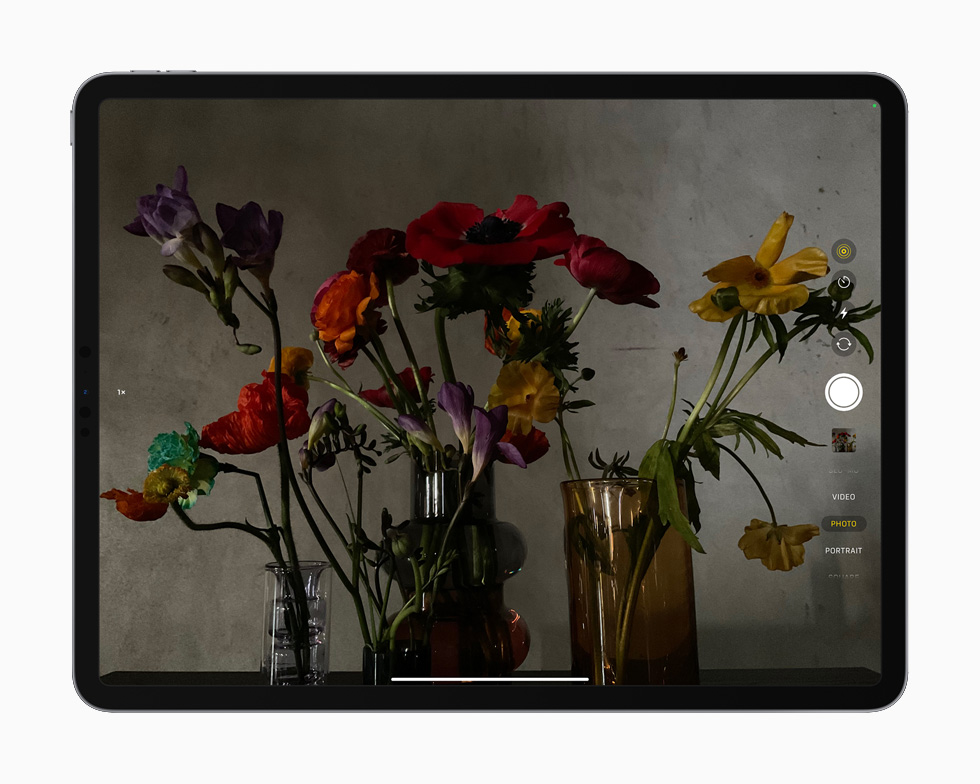 一张花的照片,演示 iPad Pro 上的激光雷达技术。