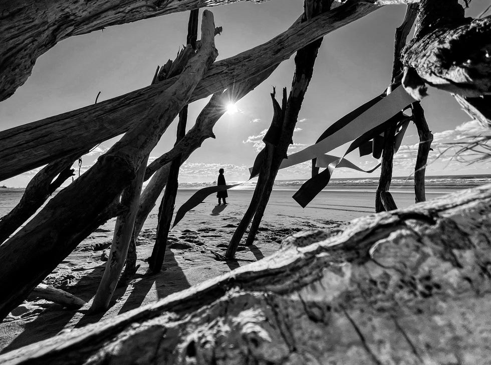 一张黑白人像照,透过浮木交错的间隙看到一个人影站在沙滩上。