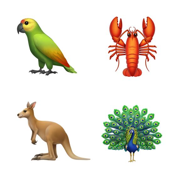 四款动物表情符号从左上方顺时针依次为:鹦鹉、龙虾、孔雀和袋鼠。