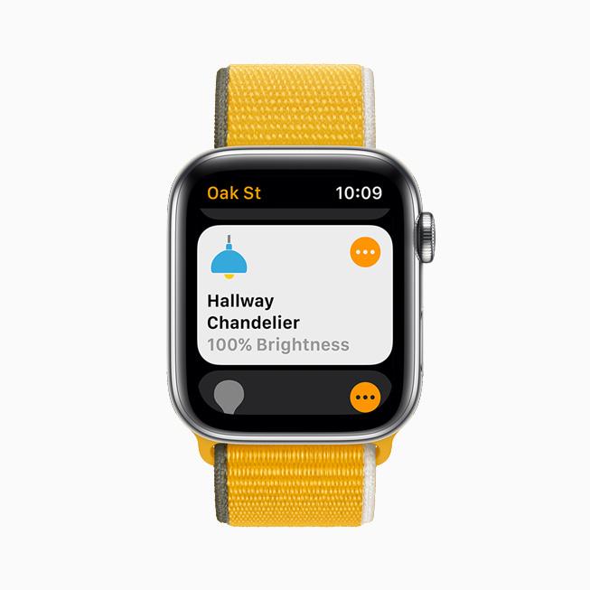 在 Apple Watch Series 6 上展示家庭 app 中显示的走廊吊灯亮度。