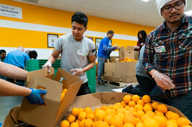 一名年轻男子正在分拣橙子。