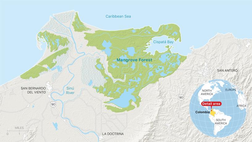 哥伦比亚科尔多瓦的 Cispatá 海洋保护区红树林地图。