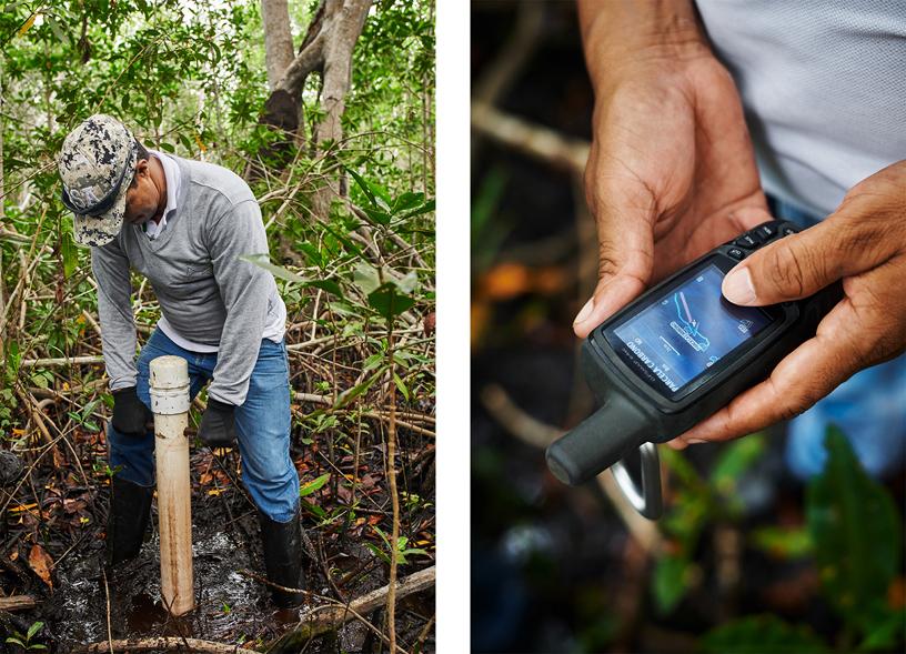 CVS 实地助理 José Gregorio Padilla Bautista 采集土壤样本。