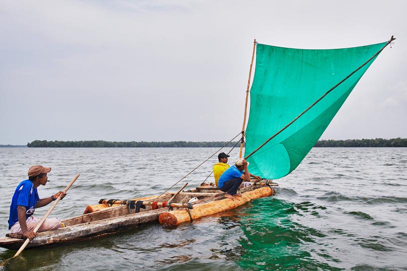 伐木工人乘坐在装有经过砍伐和修剪的红树林原木的船上。