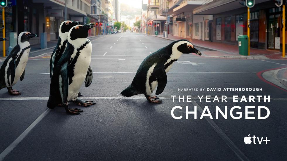 纪录片《The Year Earth Changed》的卡片。